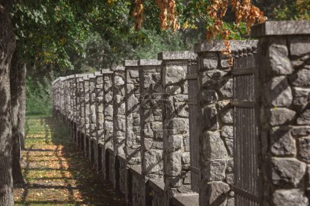 selective focus of stone fence under trees outdoors