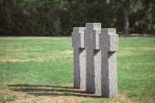 """Постер, картина, фотообои """"выборочный фокус старые надгробия на траве, на кладбище"""""""