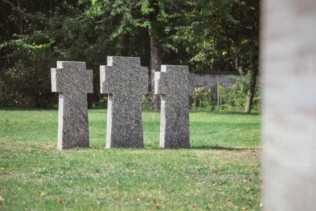 old identical tombstones placed in row on grass at cemetery
