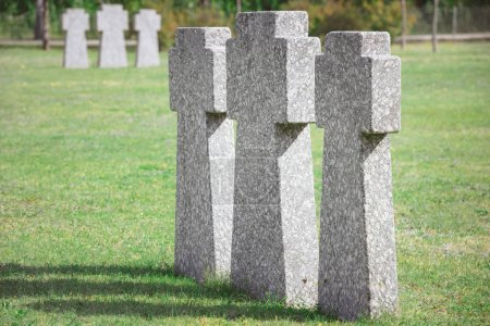 Identical old memorial headstones placed in row at...