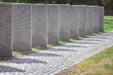 memorial gravestones with lettering placed in row at cemetery
