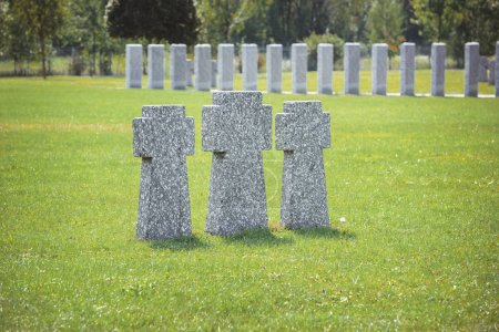 gravestones placed in row on grass at cemetery