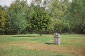 selective focus of memorial stone crosses placed in row and trees at cemetery