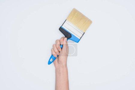 abgeschnittene Aufnahme einer Frau mit Pinselwerkzeug isoliert auf Weiß