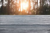 template of grey wooden floor with pine forest on background