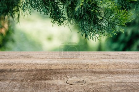 template of brown wooden floor with pine tree leaves and green blurred background