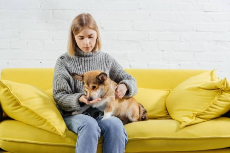 Photo for Beautiful woman sitting on sofa and giving treat cute pembroke welsh corgi dog - Royalty Free Image