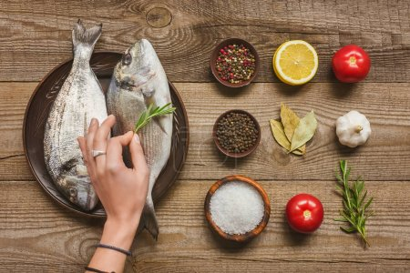 Photo for Partial view of woman decorating uncooked fish by rosemary near arranged ingredients on wooden table - Royalty Free Image