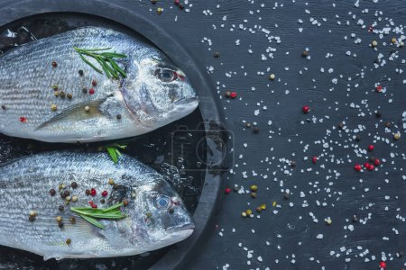 elevated view of raw fish with rosemary in tray on black table covered by salt and pepper
