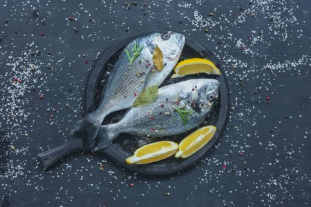 Photo for Flat lay with raw fish with lemon and rosemary in tray on black table covered by salt and pepper - Royalty Free Image