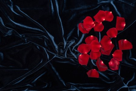 shiny black velour cloth with pile of red rose petals and copy space