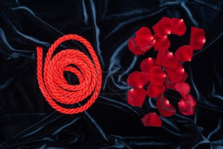 top view of rose petals and bright red rope on shiny velour cloth
