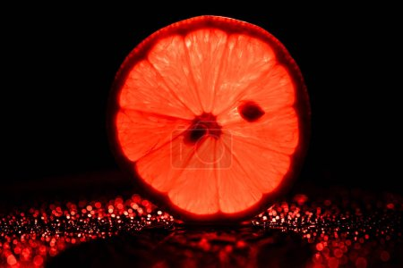 Photo for Slice of grapefruit on black background with neon red backlit - Royalty Free Image
