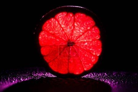 slice of grapefruit with neon red backlit on black background