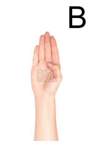 cropped view of female hand showing latin letter - B, sign language, isolated on white