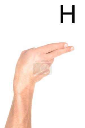 Photo for Partial view of man showing latin letter - H, deaf and dumb language, isolated on white - Royalty Free Image