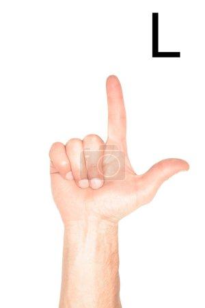 Photo pour Vue recadrée de main mâle montrant latine lettre - L, sourd et muet langage, isolé sur blanc - image libre de droit