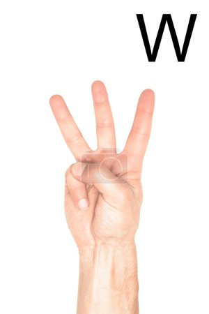 partial view of male hand showing latin letter - W, deaf and dumb language, isolated on white