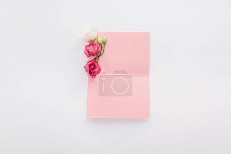 Photo pour Vue de dessus de carte vierge de rose et de fleurs isolés sur blanc - image libre de droit