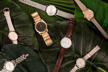 Photo pour Vue de dessus des montres-bracelets suisses se trouvant sur les feuilles vertes - image libre de droit