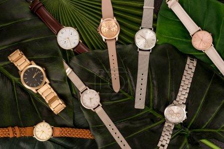Photo pour Vue de dessus des montres-bracelets élégants couché sur les feuilles vertes - image libre de droit