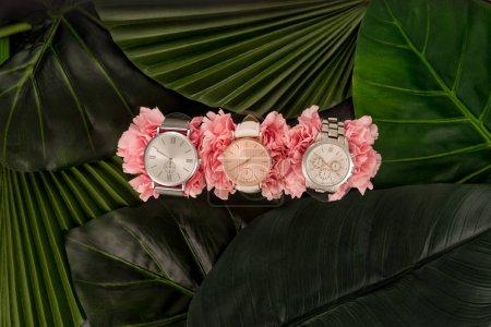 Photo pour Vue de dessus des montres-bracelets couché sur des fleurs fleurs roses près de feuilles vertes - image libre de droit