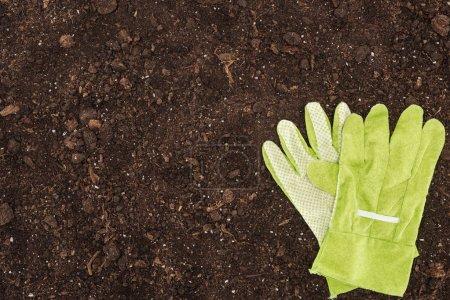 Photo pour Vue de dessus des gants couchés sur le sol, concept de protection de la nature - image libre de droit