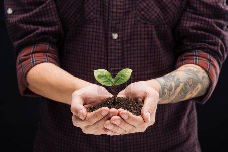 Photo pour Vue recadrée de l'homme tenant le sol avec la plante verte dans les mains isolées sur noir - image libre de droit