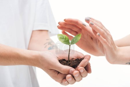 cropped view of man holding ground with plant in hands near woman isolated on white
