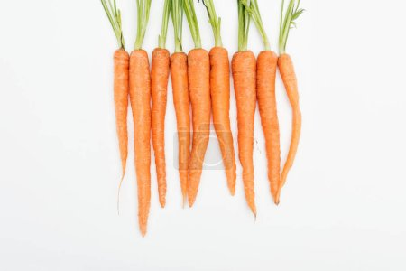 Photo for Whole fresh ripe raw carrots arranged in tight row isolated on white - Royalty Free Image