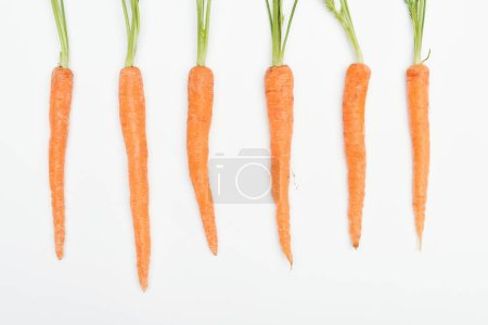 top view of fresh ripe raw carrots arranged in row isolated on white