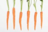"""Постер, картина, фотообои """"вид сверху свежих спелых сырых всего морковь, расположены в строке, изолированные на белом"""""""