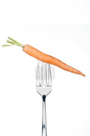 Photo pour Toute mûre fraîche carotte sur fourche isolée sur whiteisolated sur blanc - image libre de droit