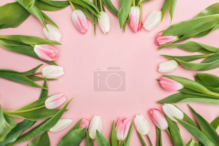 Photo for Top view of spring frame with tulip flowers isolated on pink - Royalty Free Image