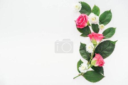 Photo pour Vue de dessus de la composition des fleurs isolées sur blanc - image libre de droit