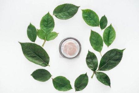 Photo pour Vue de dessus de composition circulaire avec des feuilles vertes et crème de beauté isolée sur blanc - image libre de droit
