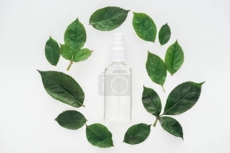 Photo for Top view of circular composition with green leaves and empty spray bottle isolated on white - Royalty Free Image