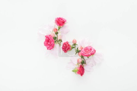 Photo for Top view of composition with roses buds, berries and petals on white background - Royalty Free Image