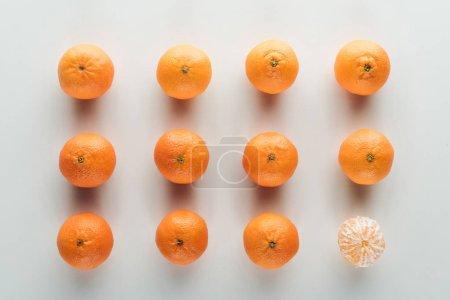 Photo pour Plat appartenait aux mandarines pelées et décortiquées sur fond blanc - image libre de droit