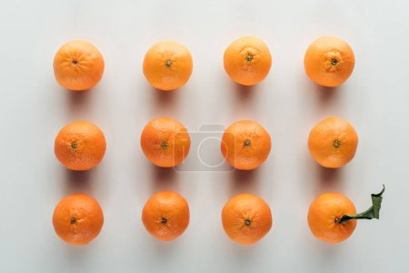 Photo for Flat lay with bright ripe orange tangerines and one with green leaves - Royalty Free Image