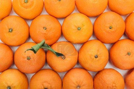 Foto de Vista superior de mandarinas maduras todo con hojas de color verde sobre fondo blanco - Imagen libre de derechos