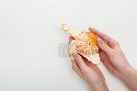 Photo pour Vue recadrée d'une femme pelant de la mandarine orange mûre sur fond blanc - image libre de droit