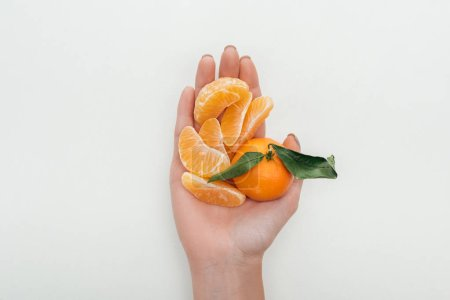 Photo for Cropped view of woman holding peeled tangerine slices and whole tangerine on white background - Royalty Free Image