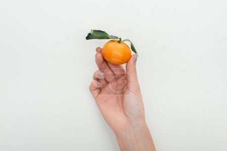 cropped view of woman holding tangerine with green leaves on white background