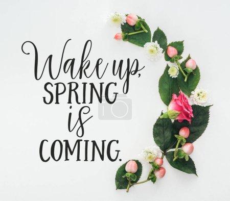 Photo pour Vue de dessus de la composition avec des feuilles vertes, rose et chrysanthèmes sur fond blanc avec réveil, le printemps arrive illustration - image libre de droit