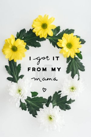 Photo for Top view of wreath with white and yellow daisies and green leaves on white background with i got it from my mama lettering - Royalty Free Image