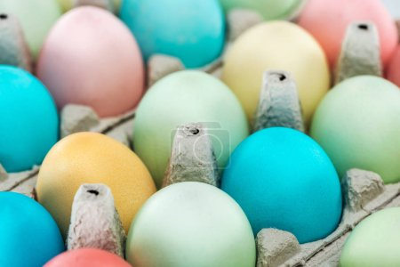 Photo for Close up of colorful pastel easter eggs in paper containers - Royalty Free Image