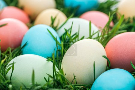 Photo for Close up of traditional colorful easter eggs on green grass - Royalty Free Image