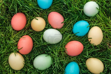 Photo for Top view of traditional colorful easter eggs on green grass - Royalty Free Image