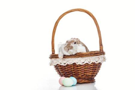 Photo pour Oeufs de Pâques près panier en osier avec lapin mignon sur blanc - image libre de droit